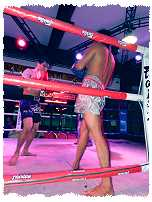 Thaiboxen Showkampf in der Walkingstreet von Pattaya